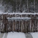 A Snowy Pumphouse Gate